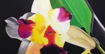 florecimiento2